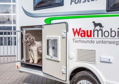 Hier dürfen unsere lieben Hunde nach dem Gassi gehen zum ausruhen rein.